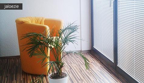 Jaloezie (wit) in kamer met oranje stoel en plant